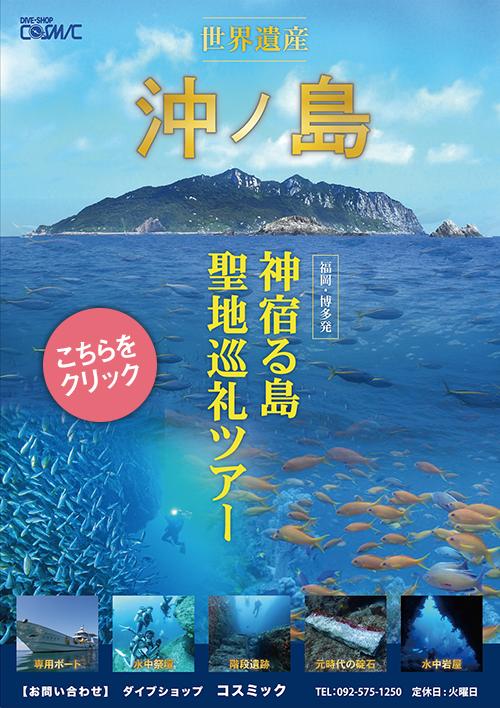 沖ノ島聖地巡礼ツアー・体験ダイビング