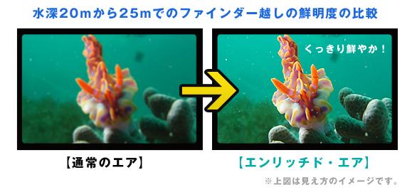 水中での見え方イメージ