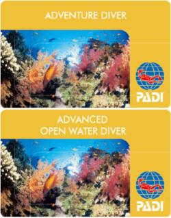 アドベンチャー・ダイビング・プログラム